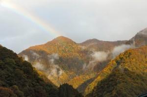 紅葉と虹のコラボレーション