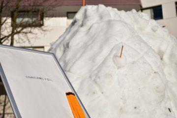 雪像(杉乃井ホテル)