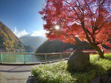 紅葉の宇奈月温泉3