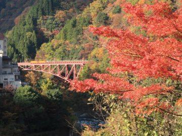 紅葉の宇奈月温泉4