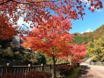 紅葉の宇奈月温泉