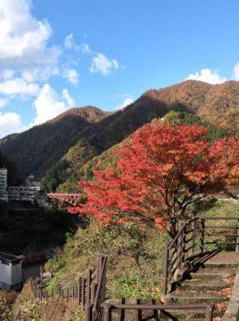 紅葉の宇奈月温泉2
